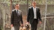 Vigilados: Person of Interest 4x2