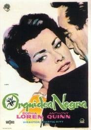 La orquidea negra 1958