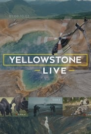 Yellowstone LIVE (TV Mini-Series 2018)