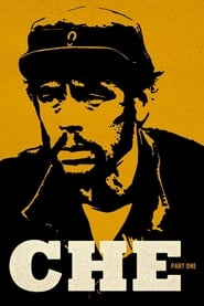 Che: Part One (2008) BluRay 480p & 720p | GDRive