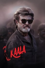 Kaala 2018 720p HQ PDVDRip Hindi Telugu x264
