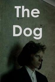 The Dog 2017