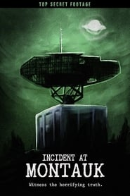 Incident at Montauk (2018)