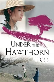 Under the Hawthorn Tree (2010)