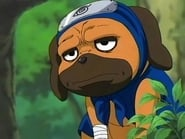 Naruto Season 2 Episode 76 : Assassin of the Moonlit Night