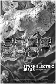 Stark Electric Jesus (2014)