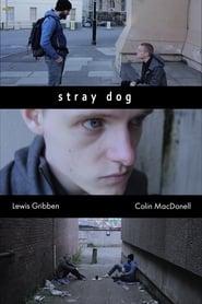 Stray Dog (2020)
