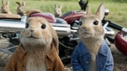 Peter Rabbit Images