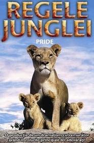 Poster Pride 2004