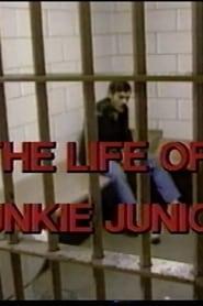 Junkie Junior 1987