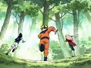 Naruto - Season 1 Episode 10 : The Forest of Chakra