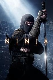 Ninja – Pfad der Rache [2013]
