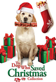 The Dog Who Saved Christmas Collection (2009-2015) — The Movie ...