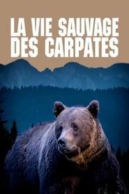 La vie sauvage des Carpates