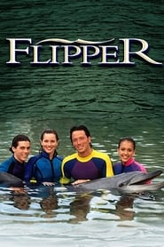 Flipper-Azwaad Movie Database