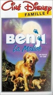 Benji la malice en streaming