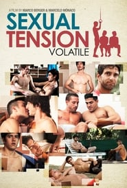 Sexual Tension: Volatile (2014)