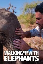 Walking with Elephants - Season 1