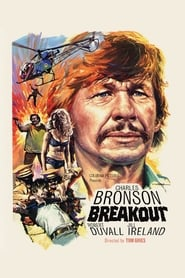 Poster for Breakout
