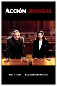 Acción judicial (1991) Class Action