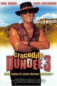 Crocodile Dundee III (2001)