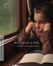 Poster del film My Life as a Dog
