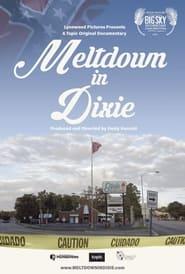 Meltdown in Dixie (2021)