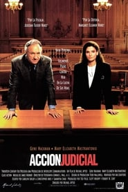 Class Action (1991)