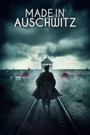 Made in Auschwitz: The Untold Story of Block 10 : The Movie | Watch Movies Online