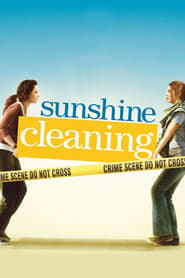 Sunshine Cleaning 2008