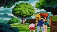 Pokémon Season 3 Episode 27 : Going Apricorn!