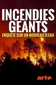 Incendies géants : enquête sur un nouveau fléau (2020)