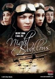 Night Swallows 2013