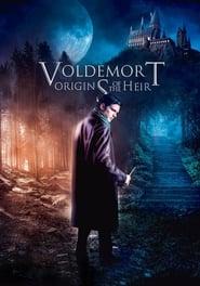 Voldemort : Les origines de l'héritier (2018)