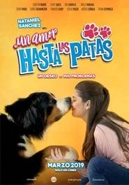 Un amor hasta las patas (2019)