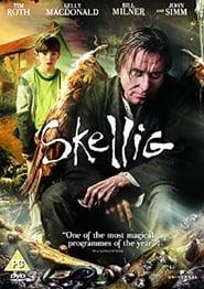 Skellig – The Owl Man