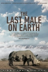 Poster for The Last Male on Earth