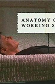 Anatomy of a Working Stiff movie