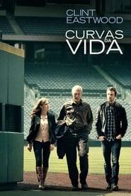 Curvas da Vida Torrent (2012)