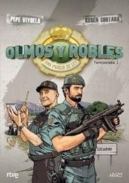 Poster Olmos y Robles 2016