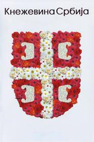 Кнежевина Србија 2008