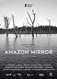 Image Amazon Mirror