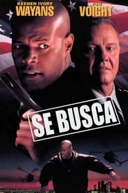 Se busca (1997) | Most Wanted