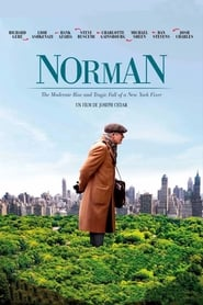 Norman: The Moderate Rise and Tragic Fall of a New York Fixer (2017)