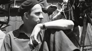 Bergman: A Year in a Life 2018 0