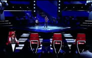 The Blind Auditions (1)