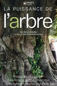 La Puissance de l'arbre avec Ernst Zürcher 2020