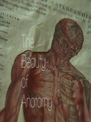 The Beauty of Anatomy 2014