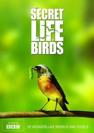 Iolo's Secret Life of Birds 2010