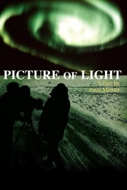 Picture of Light (1994)